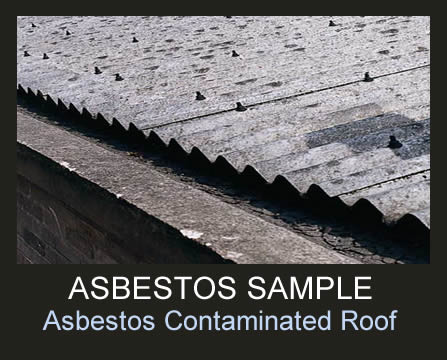 Asbestos Removal Advice Why You Should A Professional